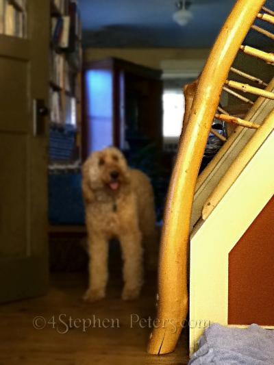 Handrail_1409